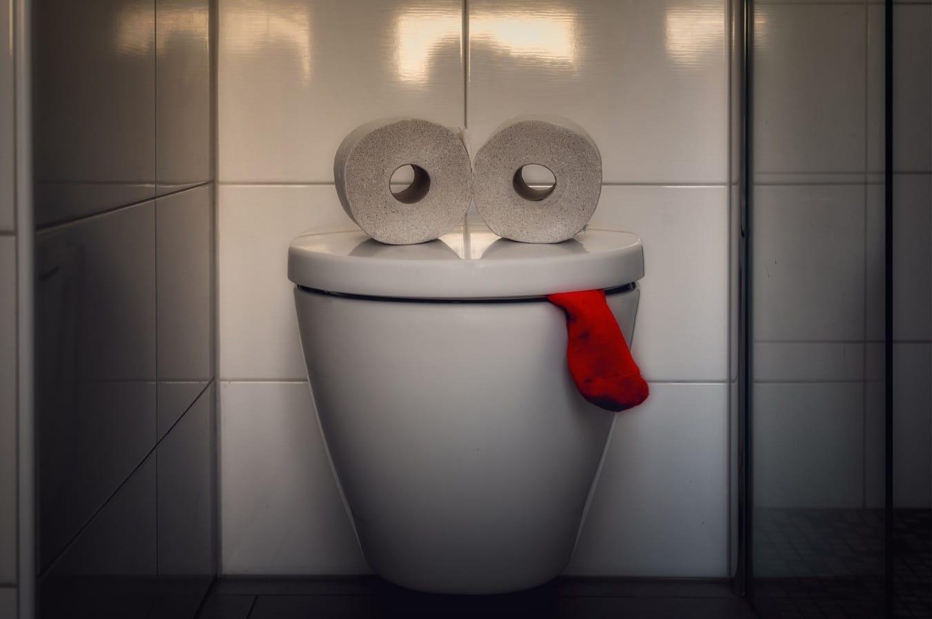 Donde tirar papel higienico 3